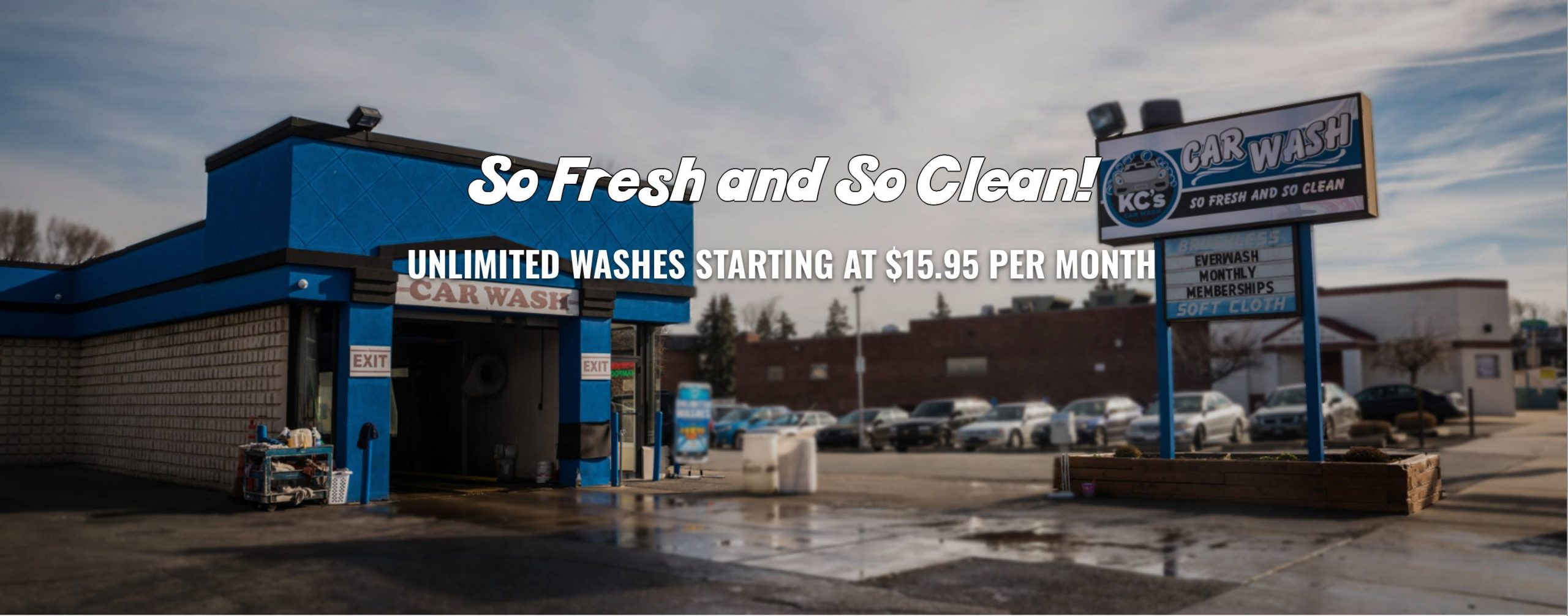 TESTIMONIAL: Here's the bottom line… EverWash is working!