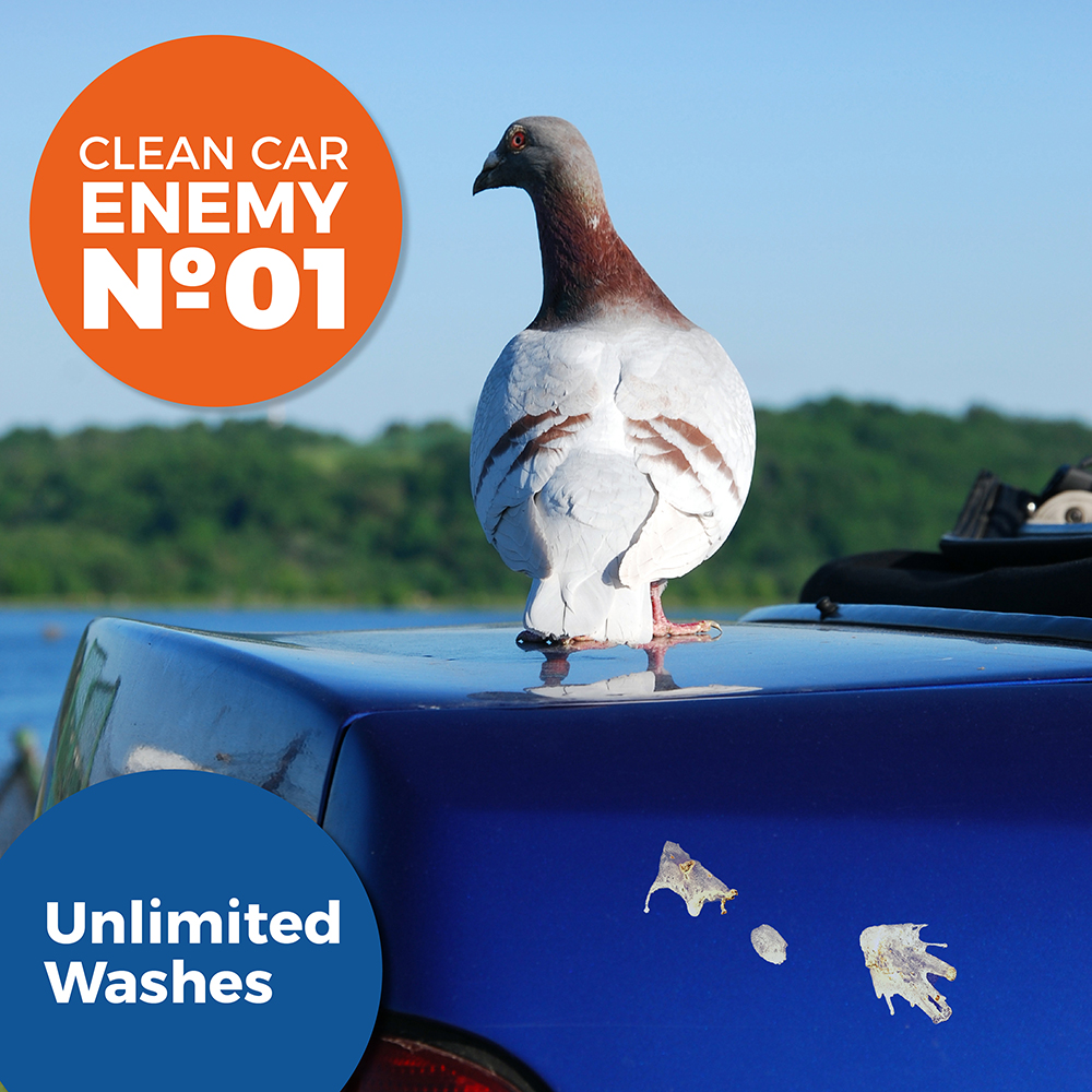 Introducing Our Clean Car Enemies Marketing Campaign!